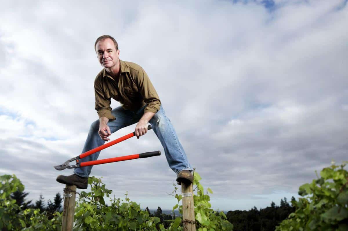 Eric Hamacher in the vineyard